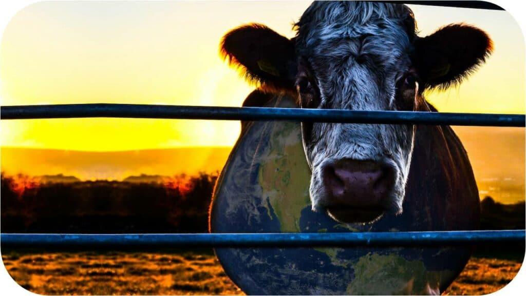 veganismo, documentário, filme, cowspiracy, vegetarianismo, estilo de vida, indústria agropecuária, indústria da pesca, alimentação, sustentabilidade, netflix