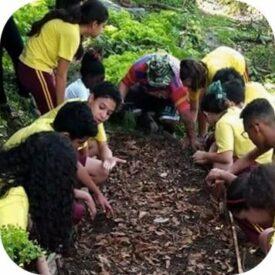 Crianças participam de aula sobre cultivo caseiro.